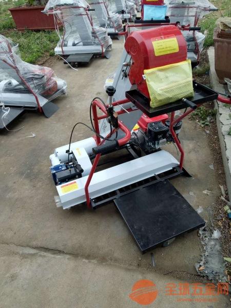 易门县汽油抽吸粮食装袋机成堆的粮食装袋机