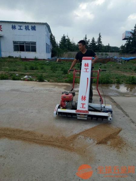 大姚县粮食装袋机小型粮食装袋机