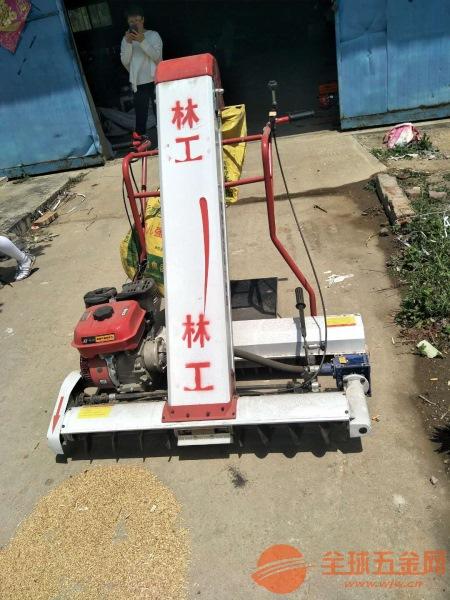 施甸县新型粮食装袋机多少钱成堆的粮食装袋需要什么机器