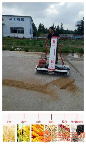 姚安县手扶装麦子的装袋机自动装麦子的小机器装袋机工作视频