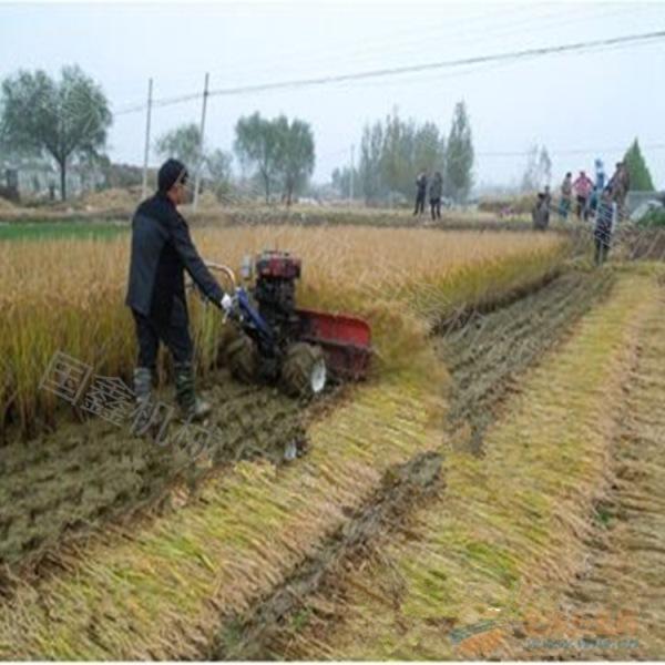 汽油辣椒大豆收獲機 中小型谷子收獲機 北京