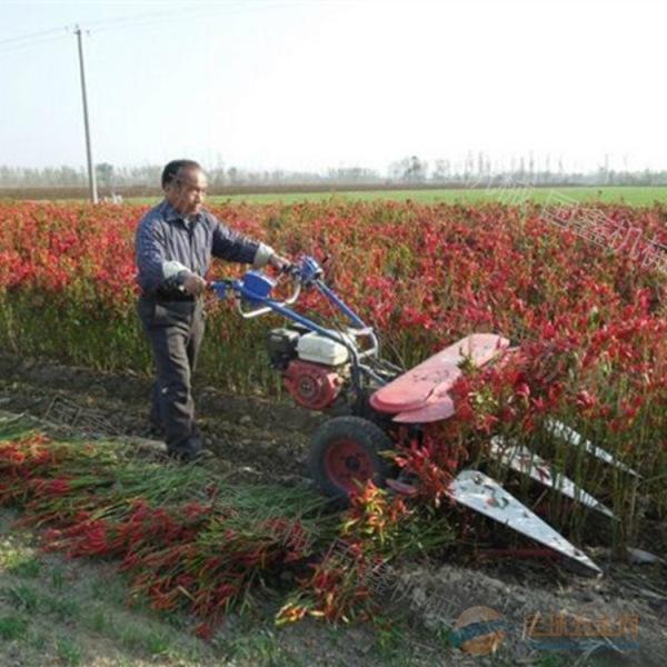 手扶農用牧草蘆葦收割機 手扶式高效割曬機 吳忠
